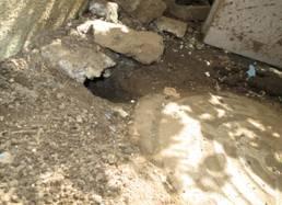 ねずみが掘った穴